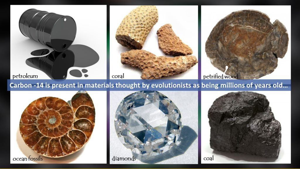 Carbon dating dinosaur fossils
